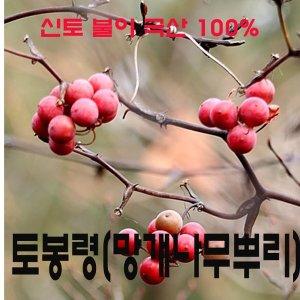 토복령300g 자연산100%생토복령담금주용직접생산판매