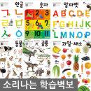 소리나는 양면 학습벽보 10종-한글/숫자/동물 벽그림