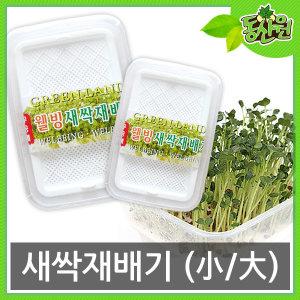 새싹재배기 재배기 새싹씨앗 씨앗 무순 밀 보리 새싹