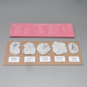 식물 화석 만들기(식물/산호5종)/JS-33023/영재/생물