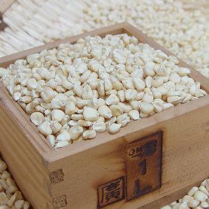 강원도 미백 옥수수알 옥수수수염 산지직배송
