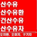 산수유/산수유즙/산수유환/산수유가루/오미자/구기자