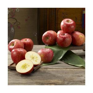 산지직송  고당도 청송꿀사과5kg /10kg
