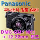 dn_공식정품_파나소닉 DMC-GM1 + 12-32mm
