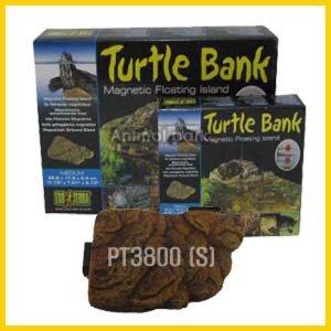 터틀아일랜드-s m 대 거북이사료 거북이용품 거북이