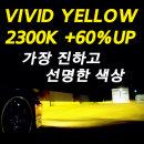 가장 진한 2300K 비비드옐로우 60%더 밝은 자동차램프