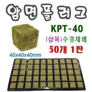 암면플러그50개1판/KPT-40/육묘용쉘/삽목/양액재배/수