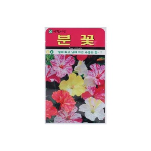 고농가든 / 분꽃씨앗 20립 (꽃씨앗)