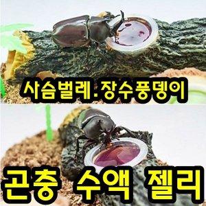 사슴벌레/장수풍뎅이 ll곤충젤리ll 먹이 사육 키우기