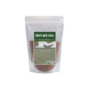 양잔디씨앗 / 켄터키블루그라스 1kg