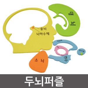 두뇌퍼즐/퍼즐/인체/장기/과학수업/기념품/선물