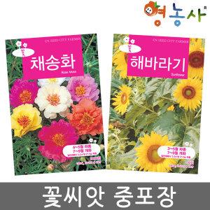 꽃씨앗 중포장 모음 봉선화 코스모스 채송화 꽃씨 씨