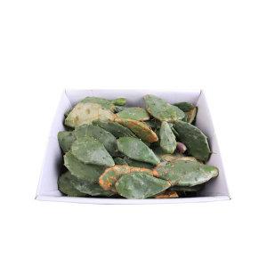 제주산 백년초 선인장 생줄기 15kg/제주현지 익일배송
