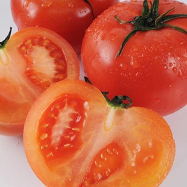 正品 토마토 대용량 10kg 영양만점 맛조은 토마토