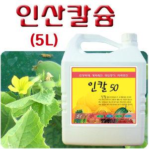 (인칼50)도장억제/화아분화/인산칼슘/영양제/영비원