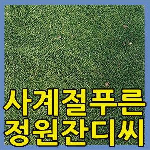 켄터키블루그라스잔디씨1kg/20평/운동장/정원