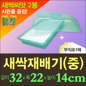 새싹재배기(중)+부직포1매(사은품 새싹씨앗2종 증정 )