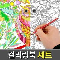 ( 비밀의정원 + 24색색연필 + 연필깎이 ) 컬러링북 세트/아트테라피