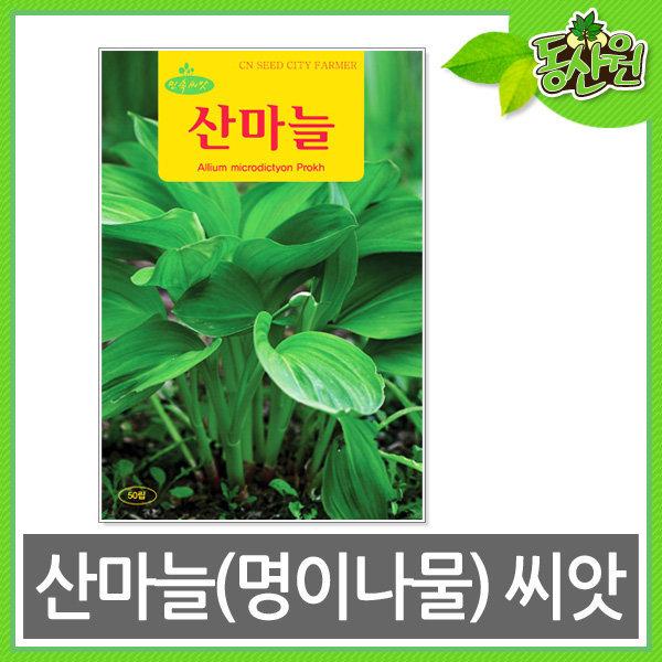 산마늘씨앗 산마늘 민속 명이나물 씨앗 채소씨앗