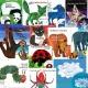 제이와이북스 노부영 에릭칼 베스트 시리즈 선택(BOOK+CD)