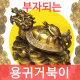 부자되는 새끼업은용귀거북이/풍수인테리어/풍수지리