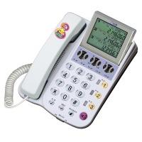 알티폰/RT3000N/당일출고/3라인전화기/3국선전화기