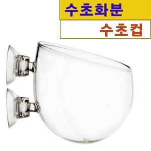 수초컵 수초볼 Plant CUP/아쿠아플랜트