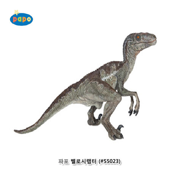 파포 (공룡 모형완구) 벨로시랩터 ( 55023)