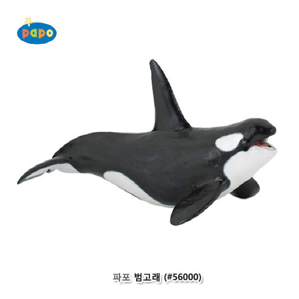 파포 (해양동물 모형완구) 범고래 ( 56000)