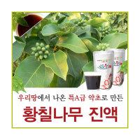 황칠나무 진액 즙 액기스 엑기스 원액 차 파는곳 가격