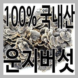 (그린내추럴) 국내 자연산 경북 영천 운지버섯 500g