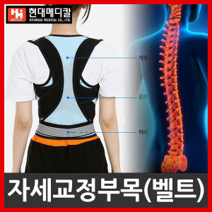 VT 현대메디칼 어깨/허리/자세교정벨트/교정밴드