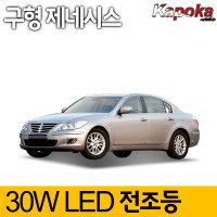 ���� ���ý�(2012������) ��� 30W LED������
