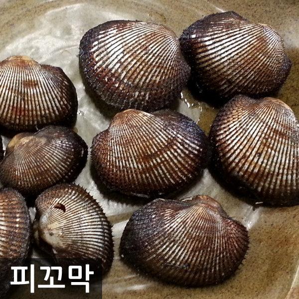 벌교피꼬막 2kg(상/특품)/피고막