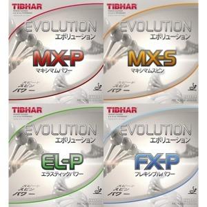 티바 에볼루션/MX-P/MX-S/FX-P/EL-P/EL-S/FX-S