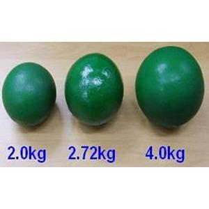 투포환(연습용투포환)/철재 4kg 여자일반 남자중용