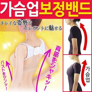 가슴업 기능성 보정속옷 뽕브라 왕뽕브라 누드브라
