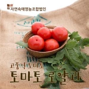 산지직송 /자연속애 /로얄과 (1~3번)토마토5kg