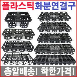 연결구/플라스틱/씨앗/육묘/이색포트/농장/모종화분