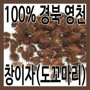 (그린내추럴) 국산 경북 영천 창이자 300g. 도꼬마리