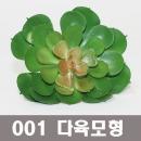 생활백화점 모형과일 화분 다육화분 모형빵 다육 01