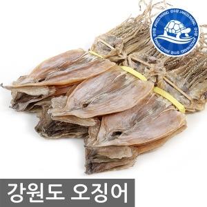 중부시장도매 강원도오징어10마리/ 전기구이오징어