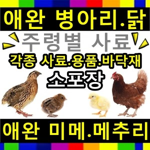 병아리 미니 메추리 사료 닭 모이 먹이 영양제 모래