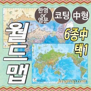 최신제작 세계지도 6종택1중형150x110 행정/지세/앤틱