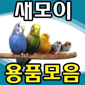 새모이 새사료 해바라기씨 새용품 모음전/잉꼬/앵무새