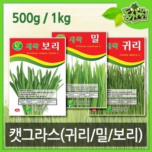 대용량 캣그라스 고양이풀 귀리씨앗 보리씨앗 밀씨앗