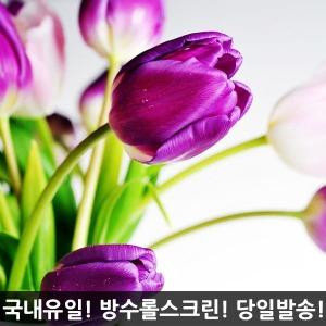 실사롤스크린/꽃과나무/방수/방염/친환경/맞춤제작
