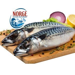 업소용 노르웨이 간고등어 40미 10kg이상 中 大 선택