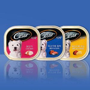 시저캔 100g 24개 6개씩 선택 강아지간식 애견간식