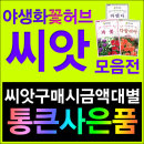 야생화꽃허브잔디나무씨앗모음전-코스모스/민들레씨앗